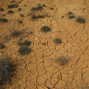 drought water sci-fi_cosmos science magazine