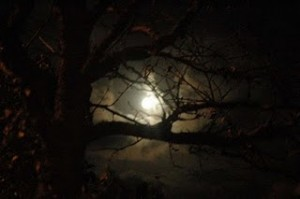 Source: http://www.fairyist.com/fairy-sightings/joshua-coslet-meets-the-corpse-candle-carmarthenshire/